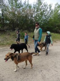 'onze' honden tijdens een wandeling